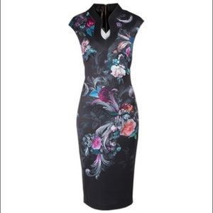 Ted Baker Marcela  floral body con dress!