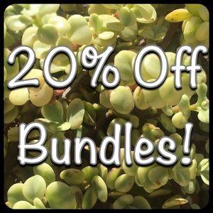 Other - 20% off Bundles!