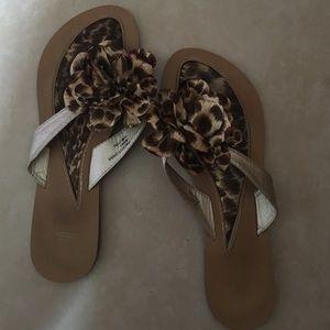 46ec40631 Aloha Island Shoes - Aloha Island leopard print Flip Flops
