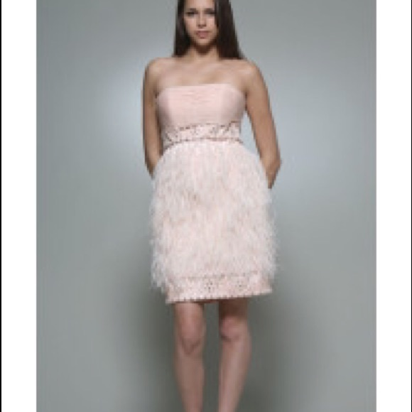 fd9da0033f NWT Beaded Sue Wong Feather Dress