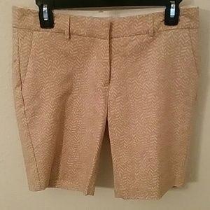 Carole Little Pants - Adorable cargo shorts