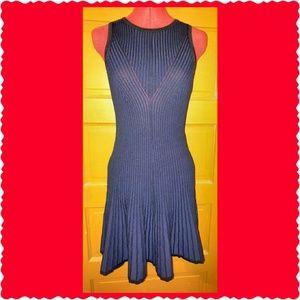 Carmen Marc Valvo Dresses & Skirts - NWT: Ribbed, flare bottom knit dress