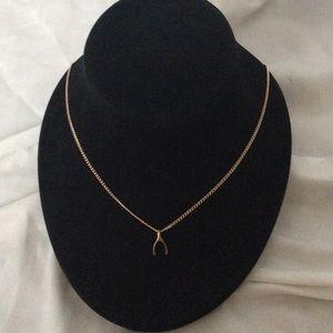 Dainty Gold Wishbone Necklace