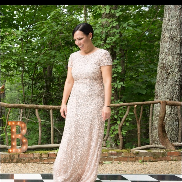 Adrianna Papell Dresses Stunning Long Blush Sequin Dress Scoop