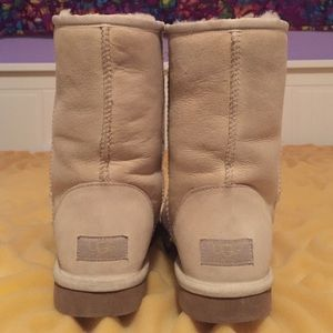 UGG Shoes - Mid-Calf Uggs