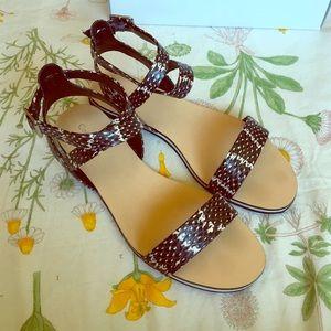 Calvin Klein Shoes - Calvin Klein Carolina Sandals