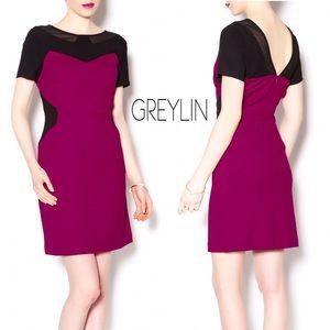 Greylin Dresses & Skirts - Greylin Belair Raspberry Black Panel Dress