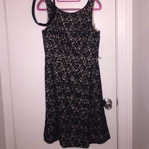 White House Black Market lace dress
