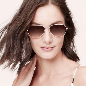 LOFT Brown Aviator Sunglasses
