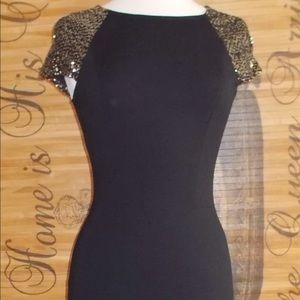 Erin Fetherston Black/silver fitted dress