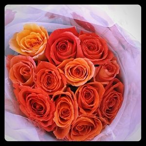 Roses for my lovely followers!