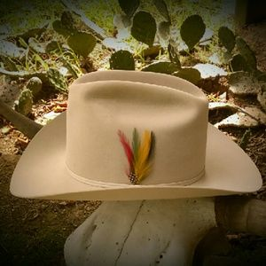Stetson Other - Vintage Stetson Silverbelly Hat