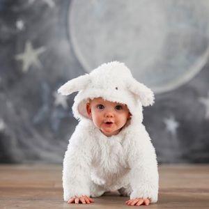 Pottery Barn Kids Costumes - Baby Lamb Costume  sc 1 st  Poshmark & Pottery Barn Kids Costumes | Baby Lamb Costume | Poshmark