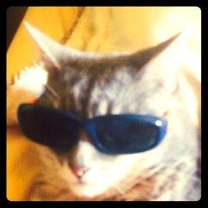 Carter's Other - BOGO! Carter infant/ toddler sunglasses