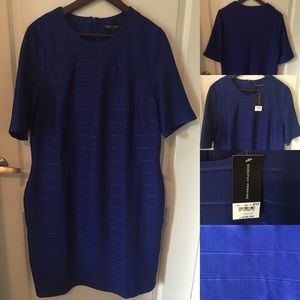 NWT Dorothy Perkins Royal Blue Bandage Dress US16
