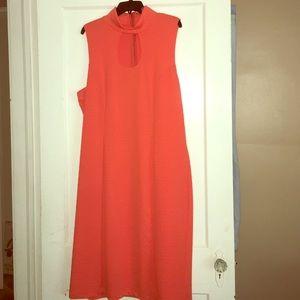 Plus Size Brunt Orange Dress