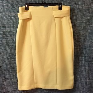 Dresses & Skirts - Eva Mendes pencil skirt. Brand new without tags