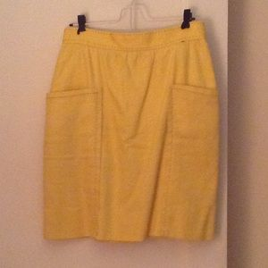 Anthropologists pencil skirt