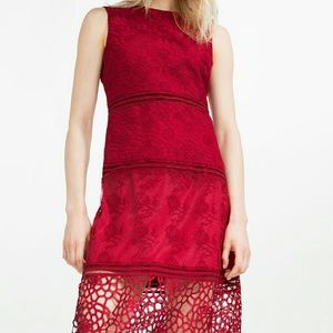 Zara embroidered lace dress (1489)