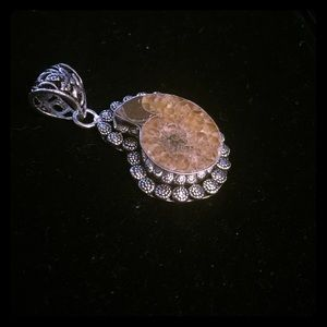 Jewelry - ❗️REDUCED Rare beauty fossil pendant in925 silver