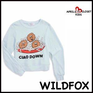 Wildfox Other - ❗1-HOUR SALE❗WILDFOX Sweatshirt Ciao Down