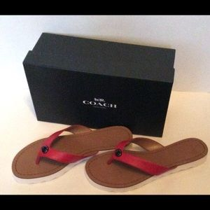 Coach Shelly Semi Matte Calf Flop Flops Size 7 NIB