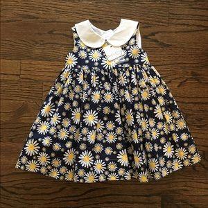 Baby CZ Other - Navy blue daisy dress