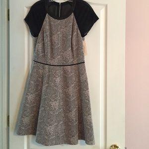 NWT Rebecca Taylor Dress 10