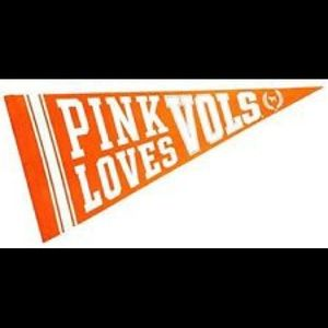 Pink VS Collectors College Banner