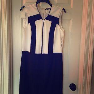 Gianni Bini minimalist dress
