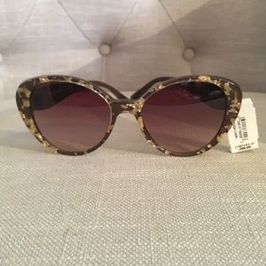 Sunglasses Gabbana Leaf Dolceamp; Gold Cat Eye vN08nwm