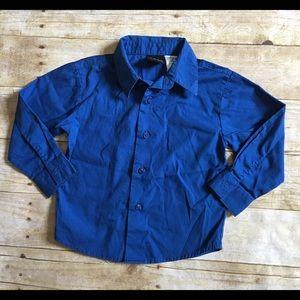 Cobalt Blue Button Down Shirt