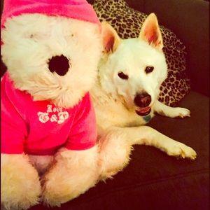 Juicy dog :)