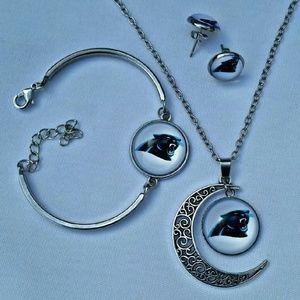 Jewelry - 🏈 PANTHERS 🏈 Jewelry set