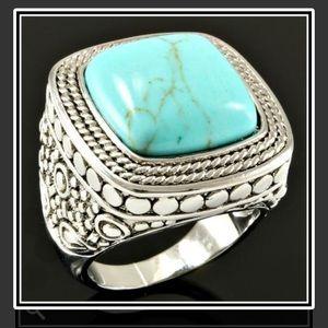 Jewelry - Tantalizing Turquoise Ring NWOT
