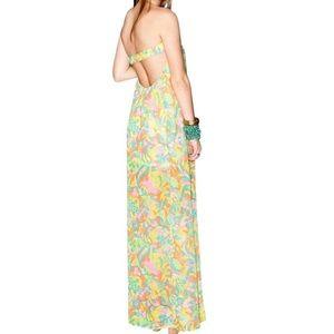 Show Me Your MuMu Dresses & Skirts - SHOW ME YOUR MUMU Classic Dress Printed Maxi Swing