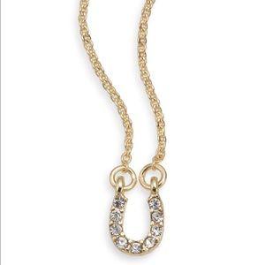 New Pavé Horseshoe Pendant Necklace!
