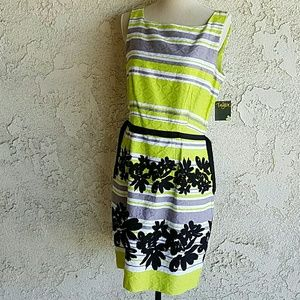 Taylor Dresses brand new