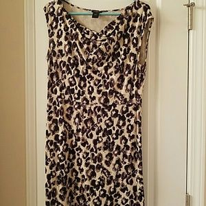 Ann Taylor Leopard Print Dress