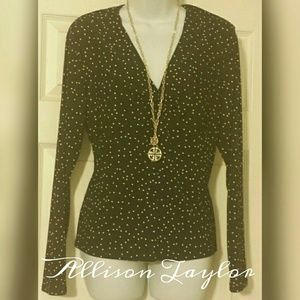 Allison Taylor Tops - NWT Allison Taylor V-neck pullover Light Gauzy Top
