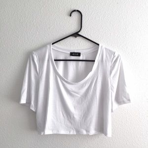 Everyday Crop Top