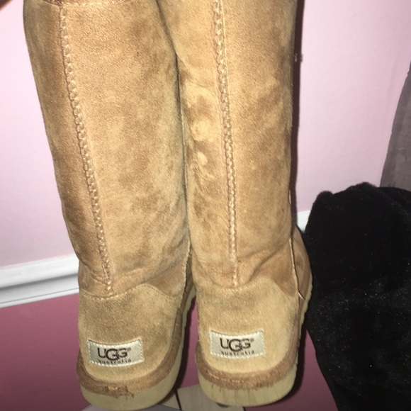 Tall Chestnut Uggs Size 8