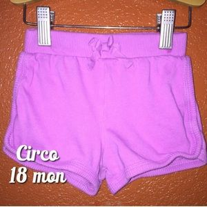 Circo Purple Casual Comfy Shorts 18 months
