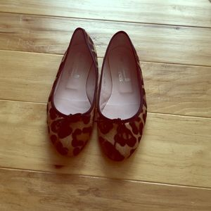 Pretty Ballerinas Shoes - Leo flats from renowned pretty ballerinas