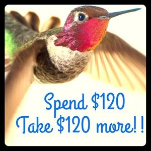 🌟🌟🌟SALE!!!☀️☀️☀️spend $120 take another $120!