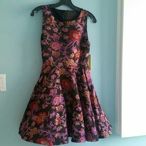 NWT!!! Alice and Olivia Fitted Bodice Dress Size 0
