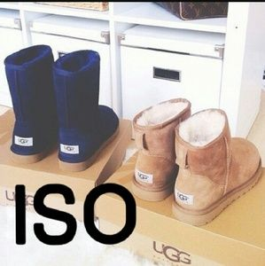 Shoes - ISO UGG boots.