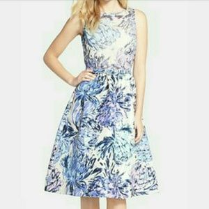 Taylor fit and flare midi dress from Nordstrom - 6