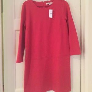 LOFT red shift dress 8
