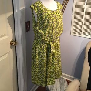 Robbie Bee Dresses & Skirts - Dress size 14 by Robbie Bee signature&FREE gift